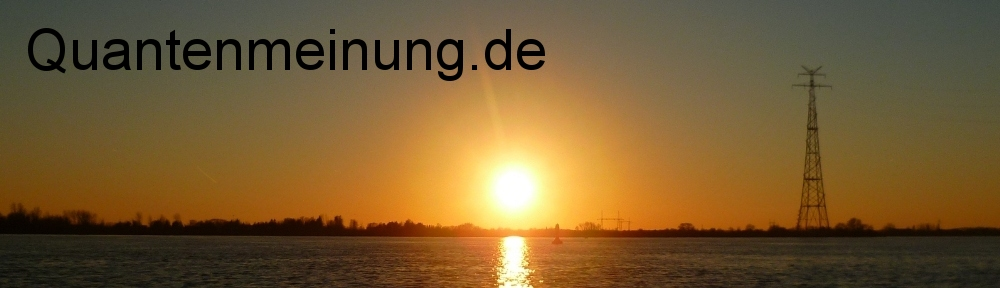 Quantenmeinung